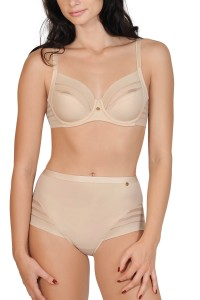 """Alegra"" High Waist Briefs"